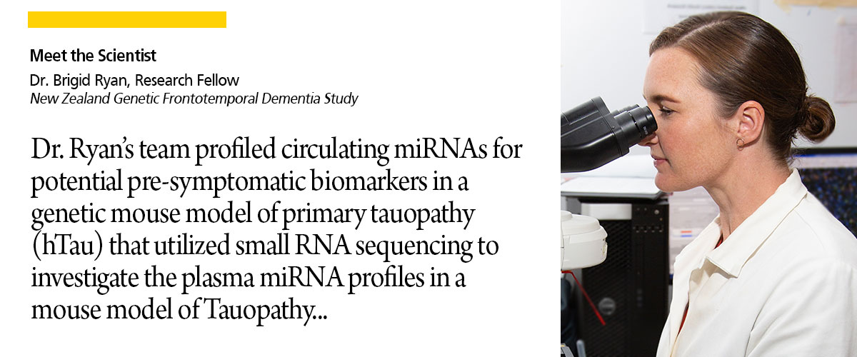 Big Research Potentials for Small RNAs as Biomarker in Neurodegenerative Diseases