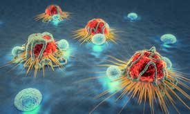 Enhancing Immunotherapy Against Solid Tumors