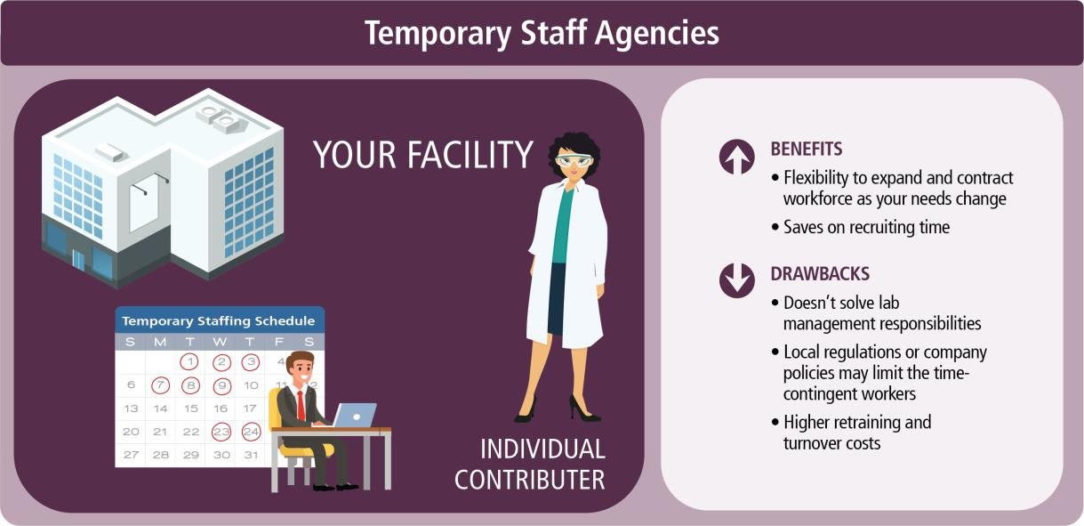Staffing or Temporary Hiring Agencies