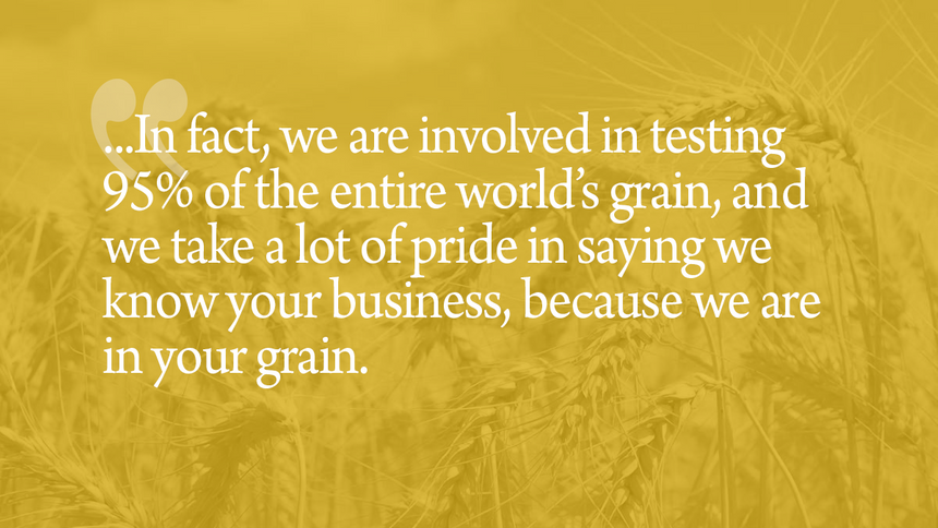Feeding the world starts with a single grain of wheat