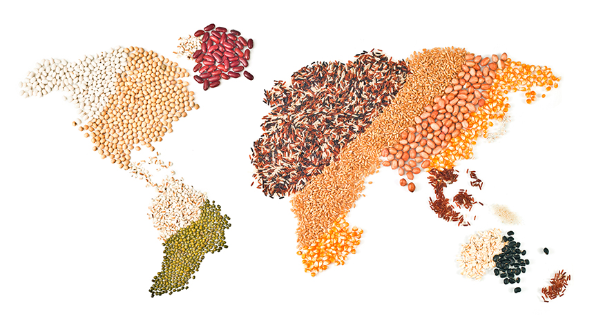 Using Data Analytics to Avoid World Hunger